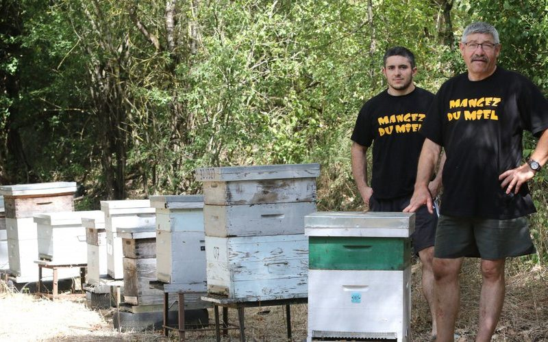 Les ruchers d'Embideau
